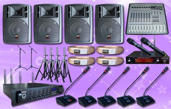 conference wireless auderpro A 41 mic+ sound system