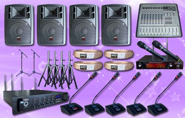 conference wireless auderpro B 31 mic+ sound system