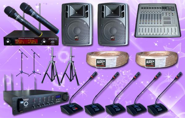 conference wireless auderpro C 21 mic + sound system