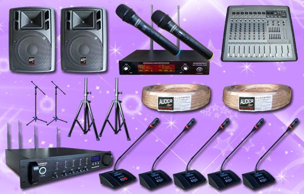conference wireless auderpro E 11 mic + sound system