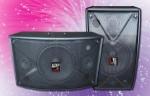 Speaker Pasif AP-10K