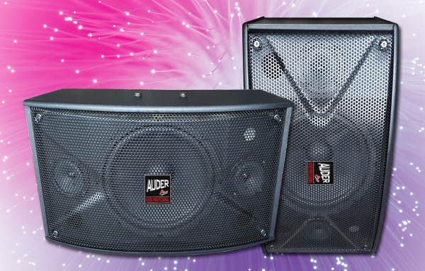 speaker pasif karaoke ap-10k 10 inch
