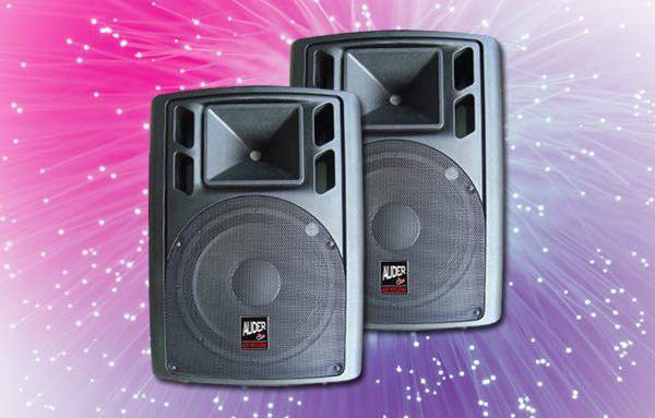 speaker pasif professional auderpro ap-122 12 inch fiber